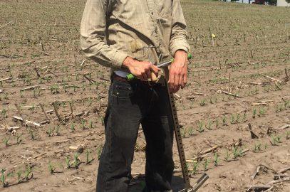 Soil health research update
