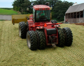 Nitrogen Use Efficiency and corn silage